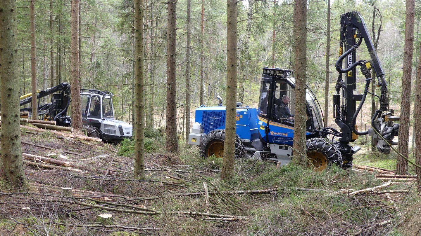 Low impact logging with Malwa 560F and Rottne H8