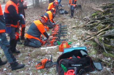 10 chainsaw loggers with their saws.