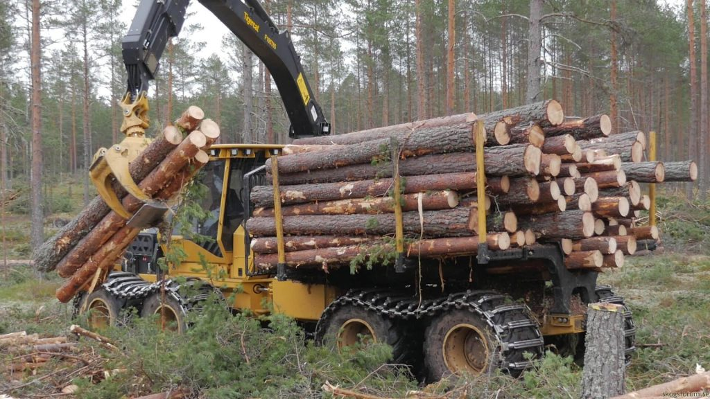 1085C Forwarder loading timber