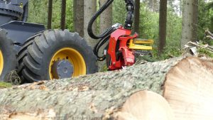 SP661LF-big-logs