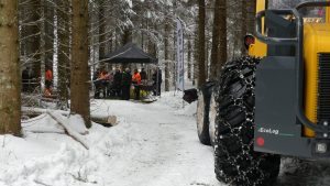 Logging demo in spruce stand with EcoLog 560E