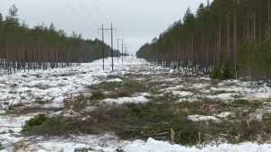 power line after clearing with Kaiser S12