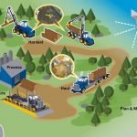 Forestry Management System (FMS)