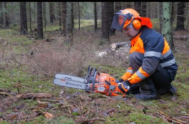 The Result After Long-Term Testing Stihl MS 500i | Forestry com