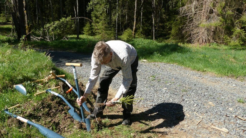 planting-bare-root-auger