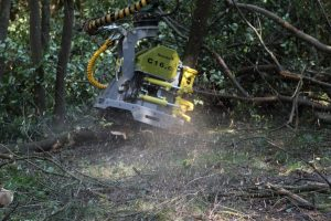 Felling head for biomass