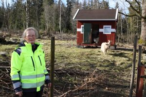 Swedish forest owners