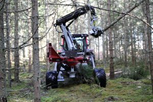 Swedish forests Hypro