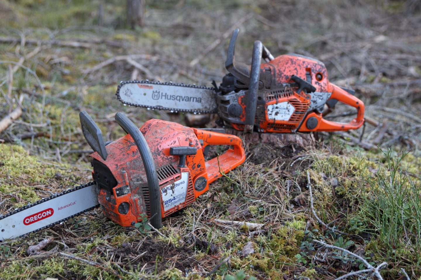 Get a license – for chain saw