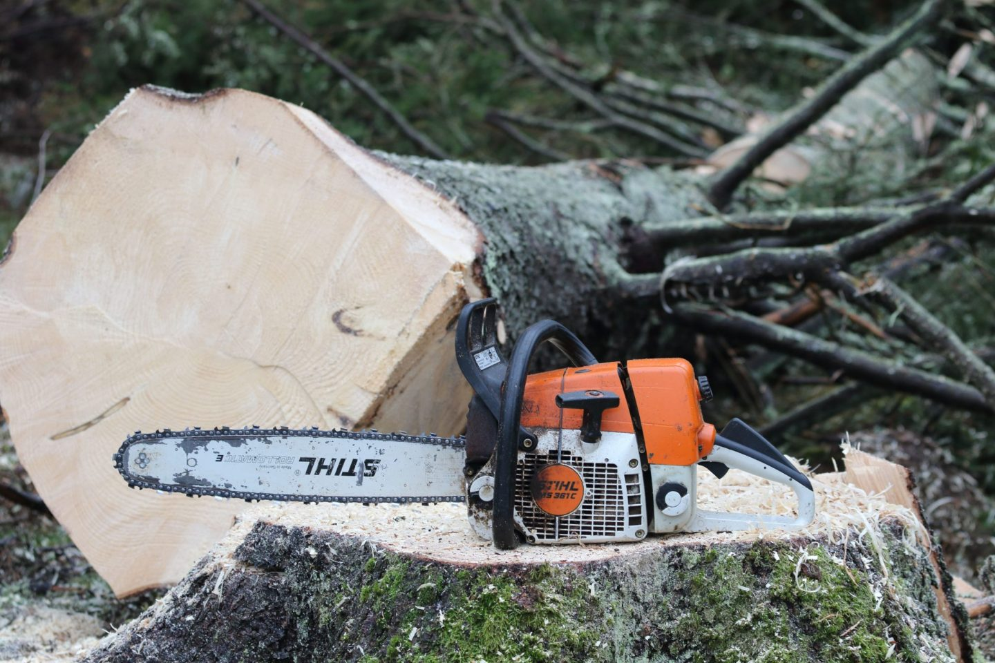 A man and his chainsaw – Stihl MS 361 C