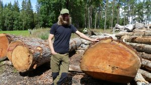 Processing oversized logs