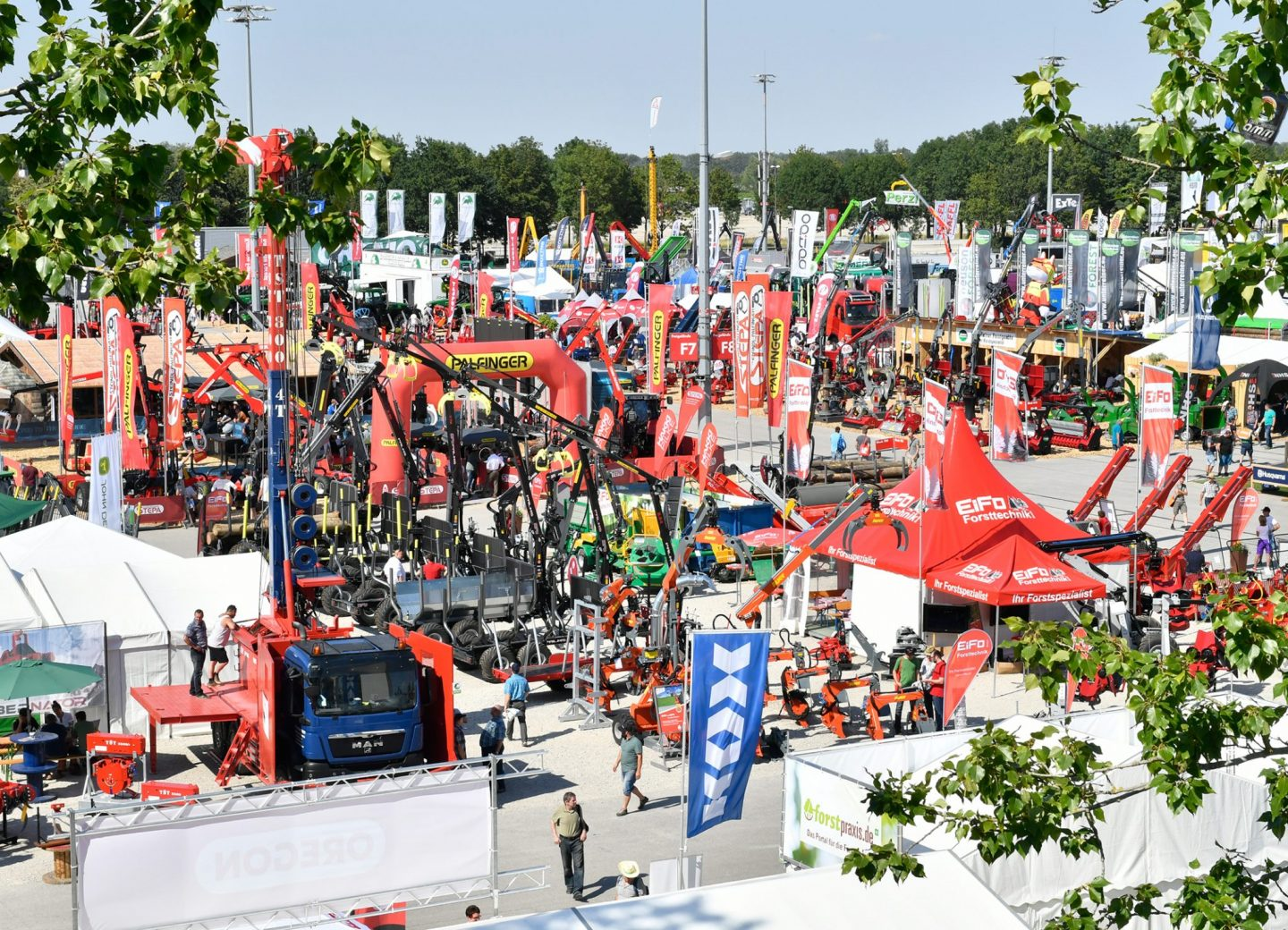 Finally – some good news about forestry fairs!